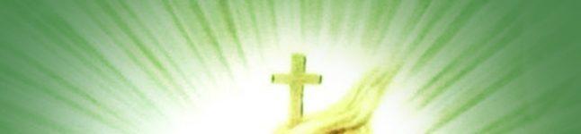 OGŁOSZENIA PARAFIALNE Nr.: 74 – XI Niedziela Zwykła – 14.06.2020