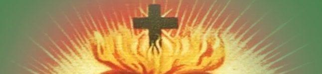 OGŁOSZENIA Nr.: 126 – XI Niedziela Zwykła – 13.06.2021